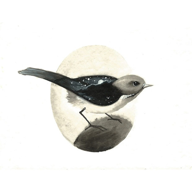 Serie uccellini #1