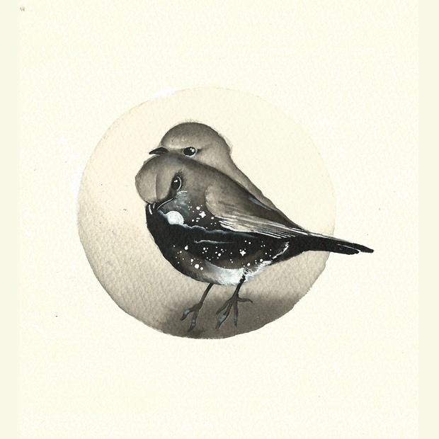 Serie uccellini #3