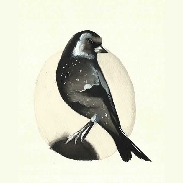 Serie uccellini #2
